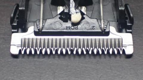 自動研磨式の刃