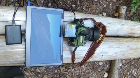 木陰ならカメラの画像を確認可能