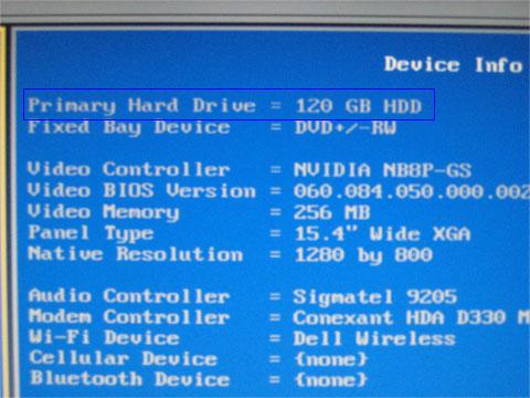SSDがHDD120GBとして認識されている