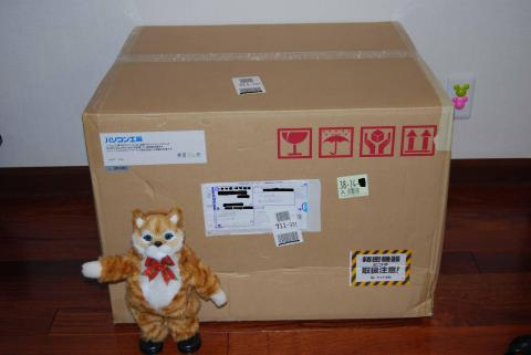 箱到着。巨大!!(一緒にいるのは我が家のダンシングキャットのネコ吉です。)
