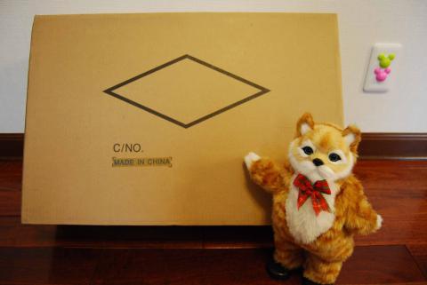 ネコ吉とPCの入っている箱