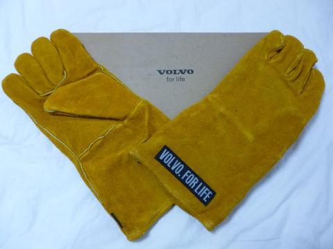 黄色く着色されているのが、オサレ、です。
