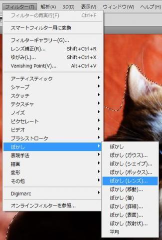 ネコカメぼかし加工11.jpg