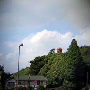 聚楽園公園に移動中に見えた大仏様。奈良の大仏様より大きいそうです