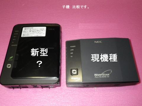 IMGP0611.JPG