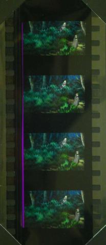 フィルムは麗花とシルヴィアとアポロ