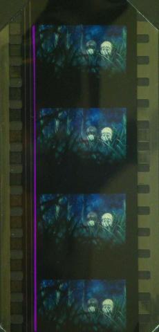 フィルムは麗花とシルヴィア