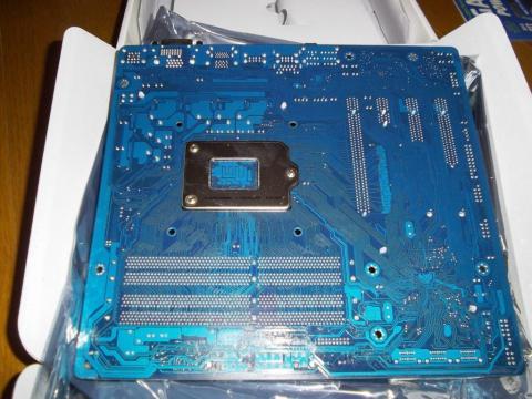 IMGP0833.JPG