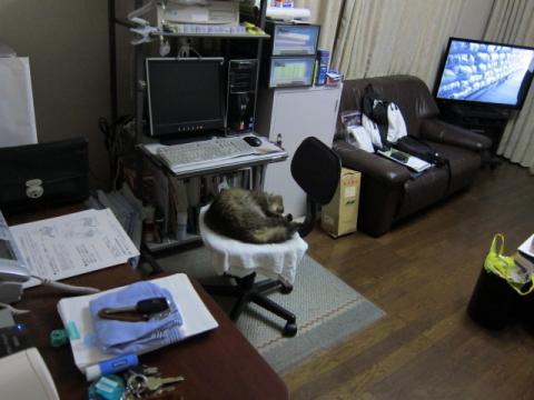 仕方がないので親機と同じ部屋にあるTVに子機を接続.jpg