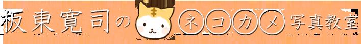 坂東寛司のネコカメ写真教室