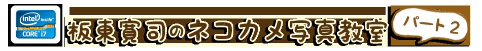 坂東寛司のネコカメ写真教室 - 自分だけの写真集制作編