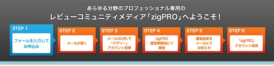 あらゆる分野のプロフェッショナル専用のレビューコミュニティメディア「zigPRO」へようこそ!
