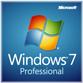 Microsoft® Windows® 7 Professional